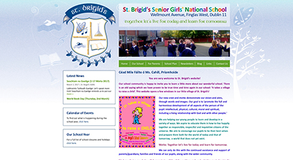 St. Brigids Senior Girls National School website design